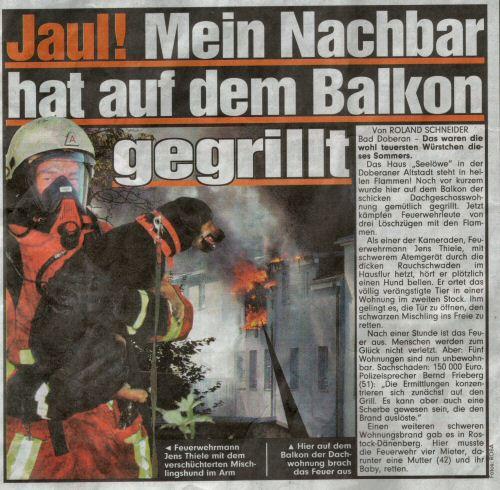 Bild Zeitung Artikel